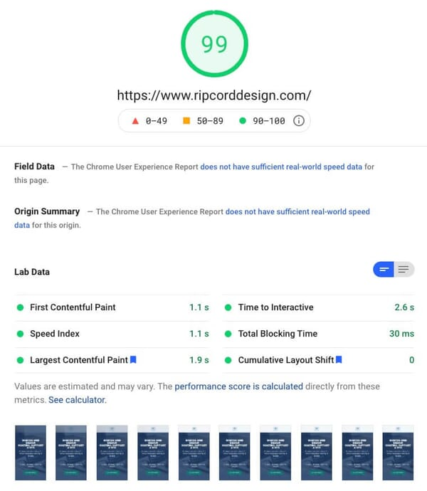Google PageSpeed Insights score of 99 for Ripcord Design