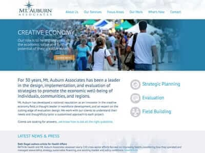 Mt. Auburn Associates website screenshot thumbnail