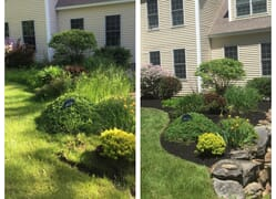 Before and after shots of a small planting bed
