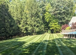 Back yard of home with pool and striped mowed lawn