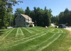 Suburban home with striped lawn mowed